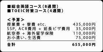 TOEIC対策コース(8週間)